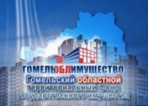 О неиспользуемом и неэффективно используемом имуществе, расположенном на территории Гомельской области и предложенном к продаже на аукционных торгах в 2017 году